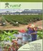 Arbusti fructiferi, cultivare si ingrijire, coperta spate