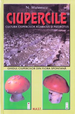 Ciupercile Agaricus Si Pleurotus