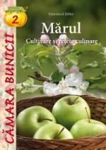 marul-cultivare-retete-204591.jpg