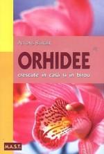 Orhideele