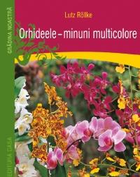 Orhideele Minuni Multicolore