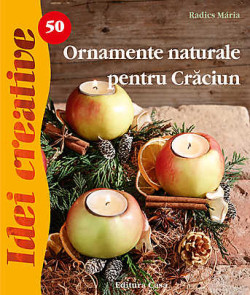 Ornamente Naturale Pentru Craciun Idei Creative