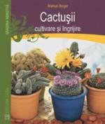 Cactusii