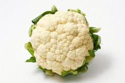 Seminte de Conopida Snowball