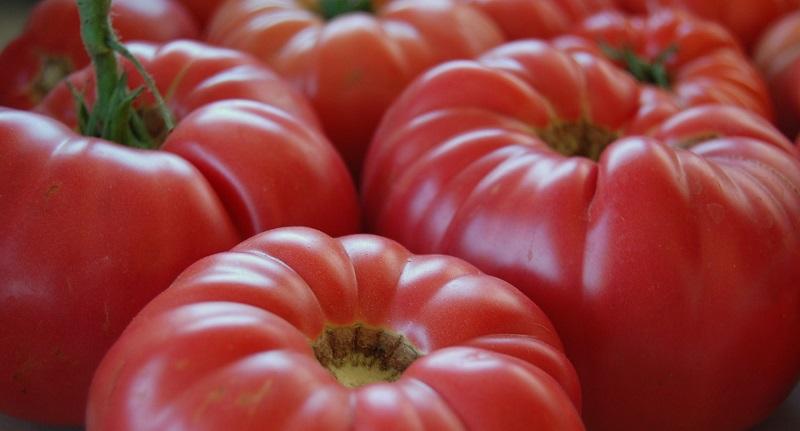 rosia fruct