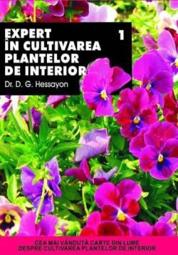 expert-in-cultivarea-plantelor-de-interior-1