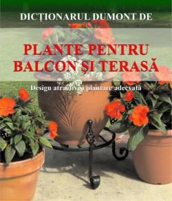 plante-pentru-balcon-si-terasa