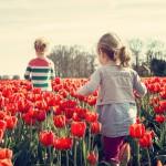 legume-bio-copii