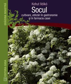 socul-cultivare-utilizari-in-gastronomie-farmacia-casei