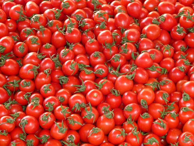 cultivare-rosii